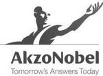akzo-nobel-teambuilding